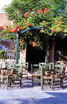 Sivota Taverna
