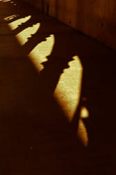 Shadow of the arches