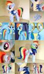 Rainbow Dash: Wonderbolt Academy