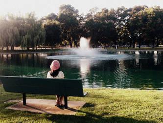 ID - Elk Grove Park by eatsoupwithsticks