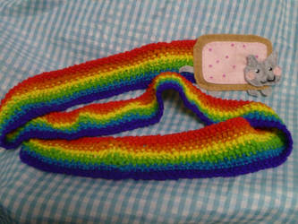 Poptart Cat Scarf by eatsoupwithsticks