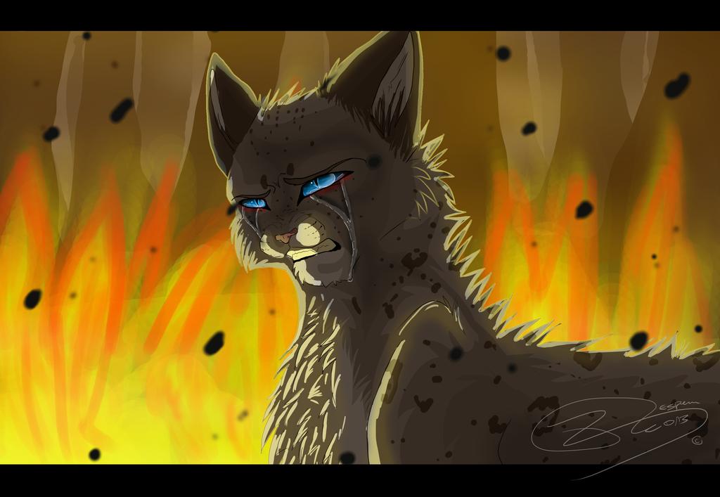 warrior cats wallpaper firestar
