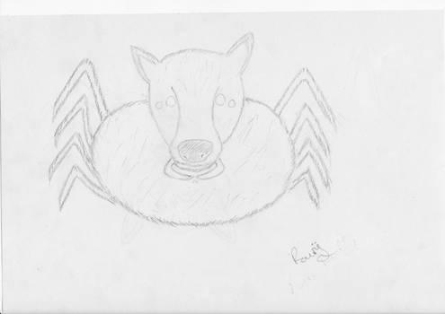 Spiderwolf