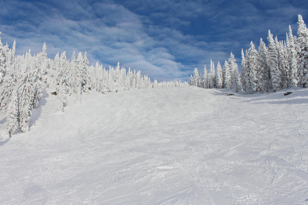 Ski Run Stock by c09567812