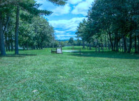 Thompson Park, HDR by Lectrichead