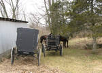 Amish Buggy Parking Only