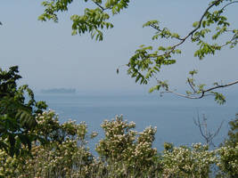 Misty over the St. Lawrence by Lectrichead