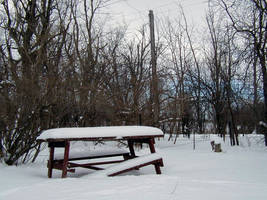 Lonely Picnic Table by Lectrichead