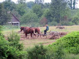 Amish Kid Raking by Lectrichead
