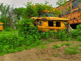 Bus, Dobbins Junk Yard by Lectrichead