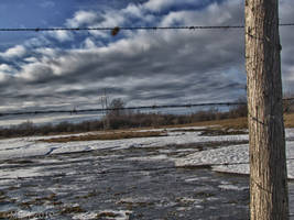 Water, ice, fence by Lectrichead