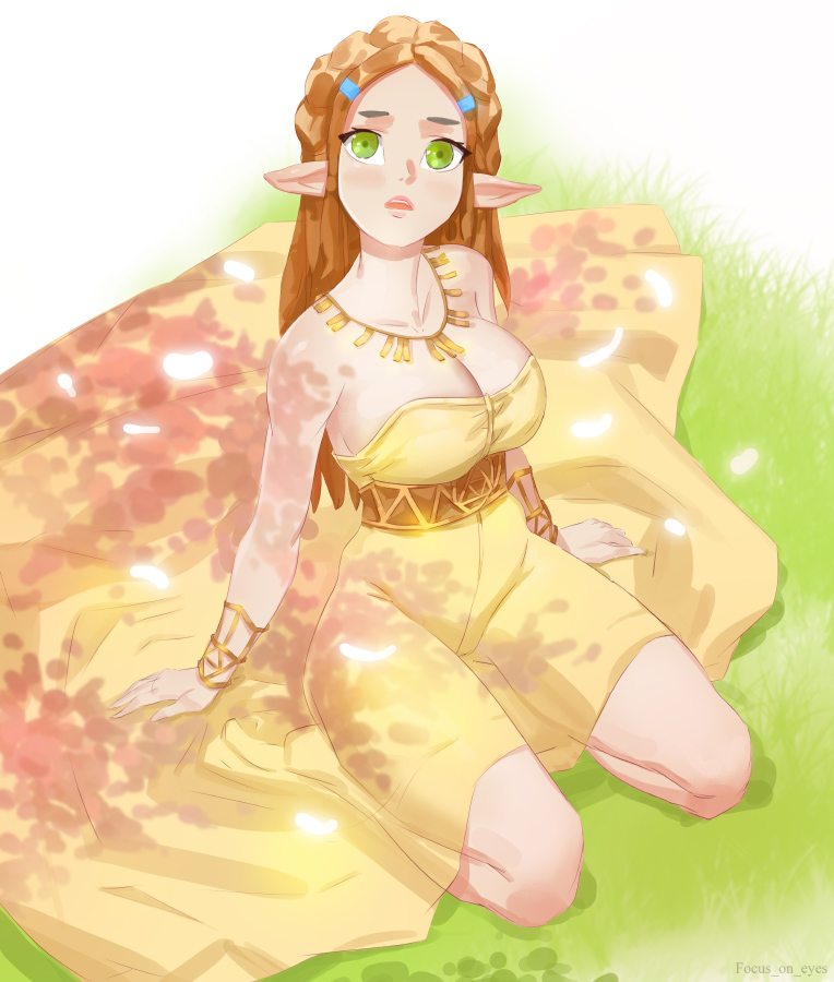 Princess Zelda by focusoneyes