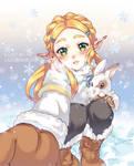 Snowy times (Zelda)