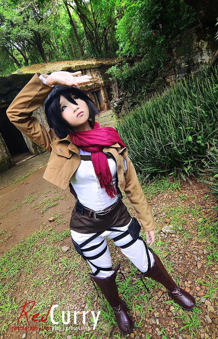 Shingeki-no-kyojin: Mikasa Ackerman by kuricurry
