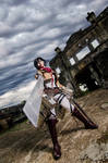 Mikasa-stand-and-fight