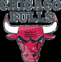 Chicago Bulls 3D Logo by Rico560