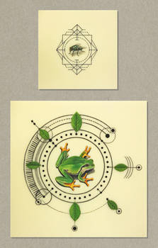 frog and Fly Tattoo design
