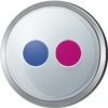 Flickr icon volumetric round 100px by EXOstock