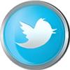 Twitter icon volumetric round 100px by EXOstock