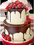 Strawberry cake with chocolate 150px by EXOstock
