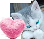 Little kitten with a fur heart 150px by EXOstock