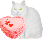 White cat with a pink cake 150px