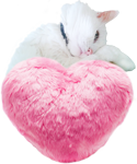 Pink fur heart with white cat 150px