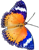 Blue-butterfly6-50px by EXOstock