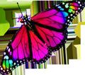 Blue butterfly 2 120px by EXOstock