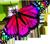 Purple butterfly 2 50px