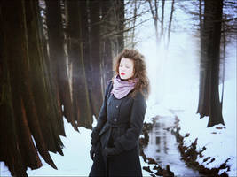 Winter savours by iNeedChemicalX
