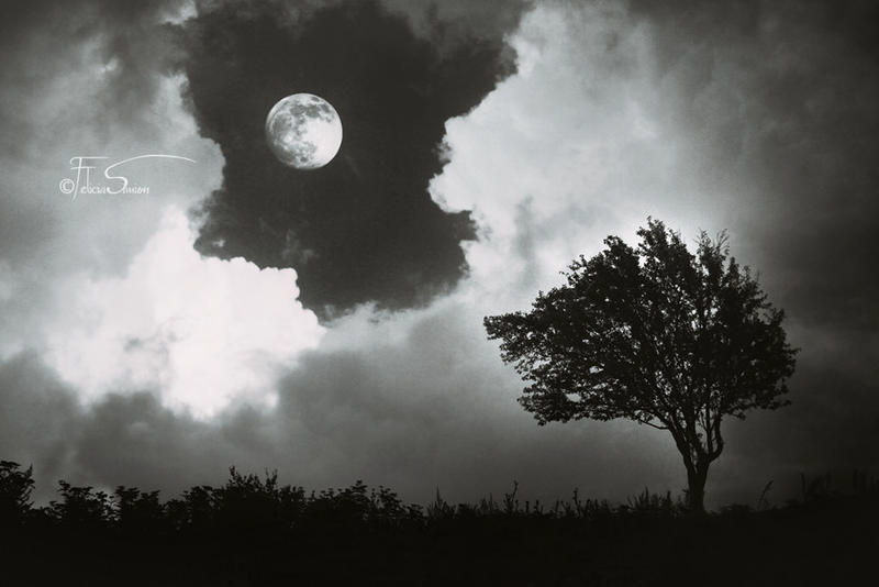 The Mystic Eye by iNeedChemicalX
