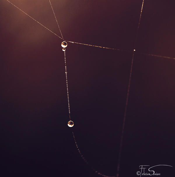 The necklace by iNeedChemicalX