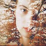 See through autumn