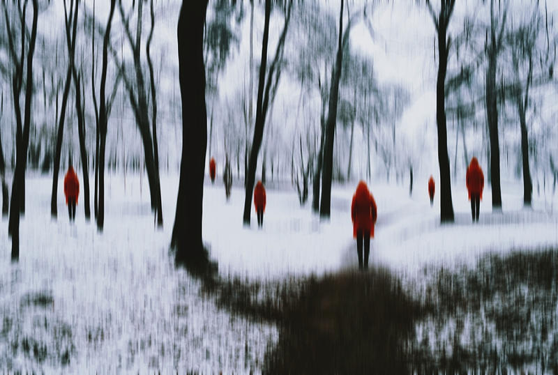 Snow and red vines by iNeedChemicalX