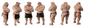 Butcher Pig Turnaround