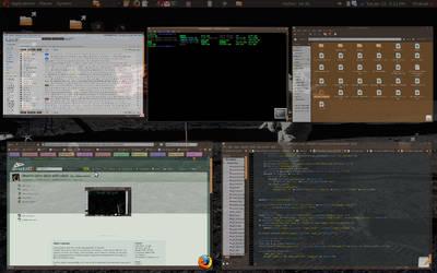 Ubuntu Scale Compiz Plugin by dnaexmosn