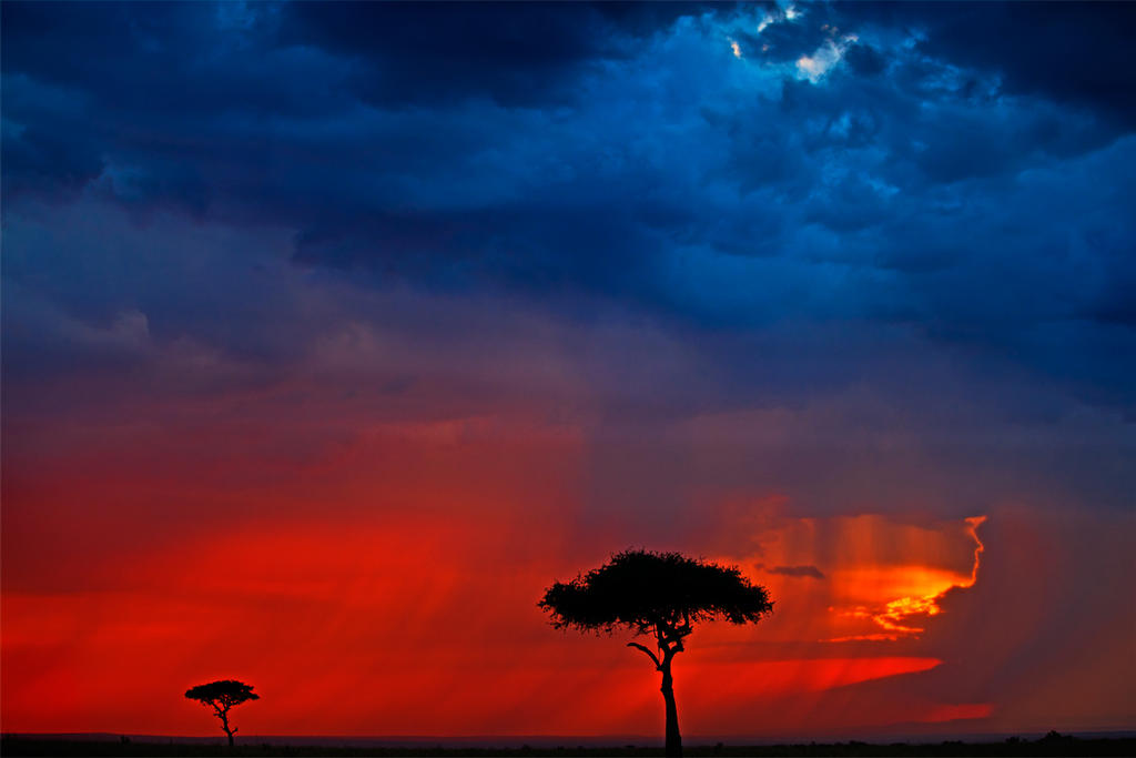 My Africa 48 by catman-suha