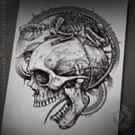 Rat skeleton and a skull
