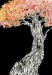 acer japonicum by s-u-w-i