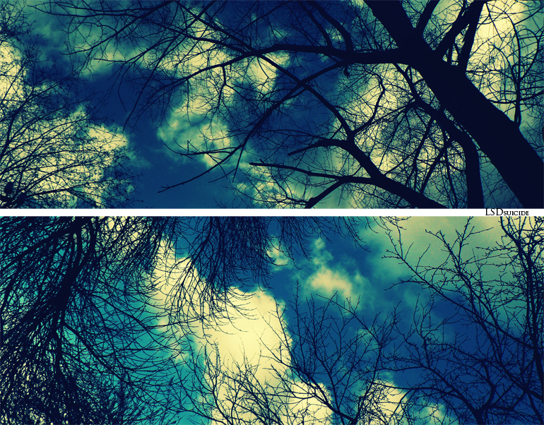 Sky by LSDsuicide