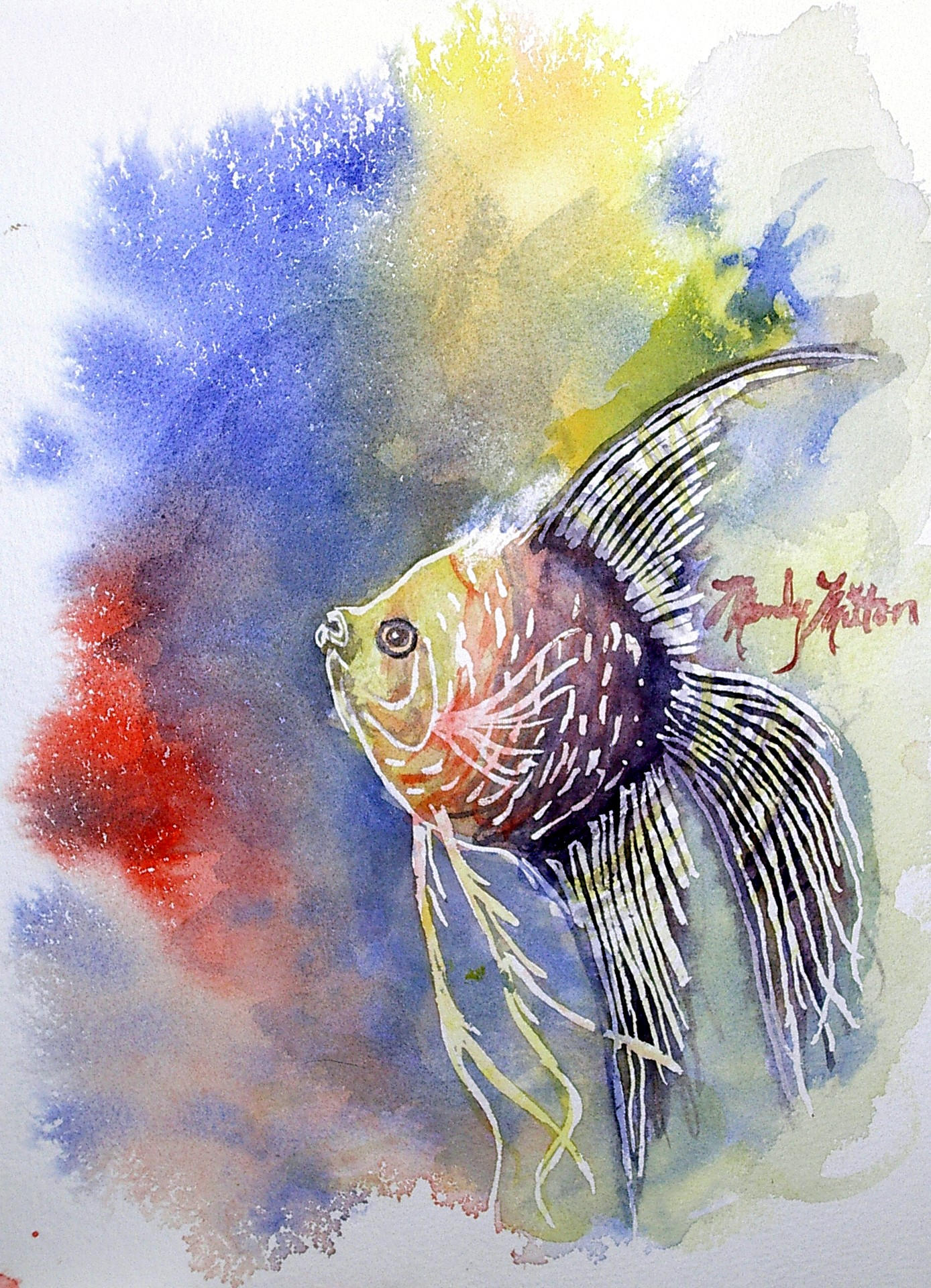 Watercolor angelfish by mandylynn on deviantart for Fish out of water watercolor