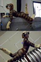 Jellicle cats come out tonight by rurouni-jedi