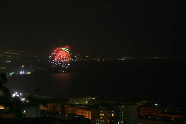 2010 - Fireworks 3 by Myxomatosis-MS