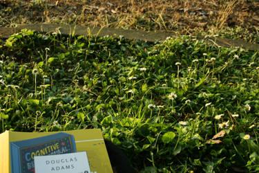 Douglas by Myxomatosis-MS