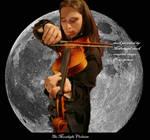 Moonlight violinist