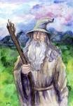 Gandalf Grey