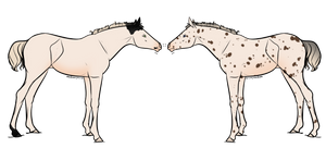 Foal Adopts 17|CLOSED