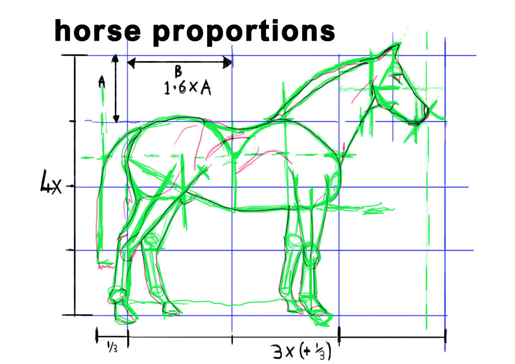 Horse proportions drawing by iajackx71 on deviantart for Size and proportion