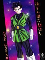 Son Gohan - Great Saiyaman by Unialien